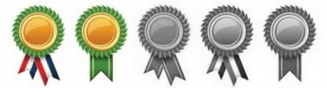 Achieved Badges
