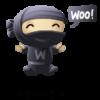 WooWorker Ninja