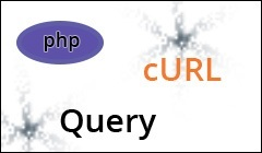 PHP cURL Query