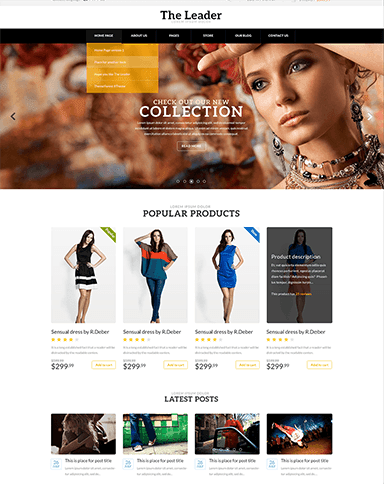 The Leader WooCommerce Theme
