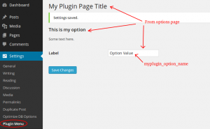 Plugin Options Page
