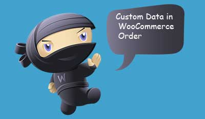 Custom-Data-WooCommerce