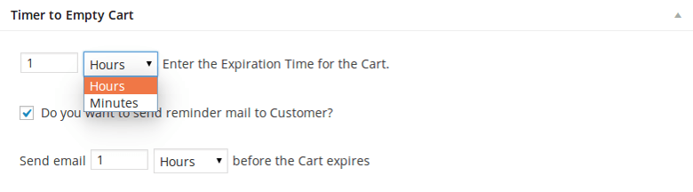 Timer to Empty WooCommerce Cart - Panel