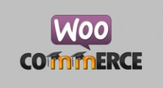 woocommerce-moodle-feature