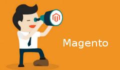 magento-installation-feature