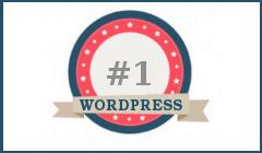 wordpress-best-cms