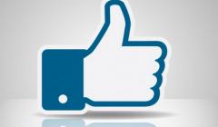 social-network-wordpress