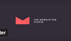 newsletter-plugin-wordpress