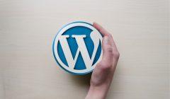 wordpress-hosting-maintenace