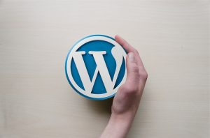 wordpress-hosting-maintenace