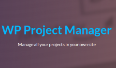 wp-project-manager-pro-feature