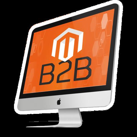 Magento-b2b
